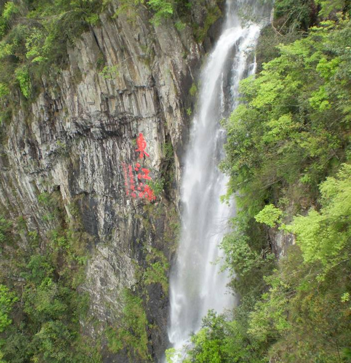 三百山森林公园ppt背景图片下载_幻灯片模板免费下载