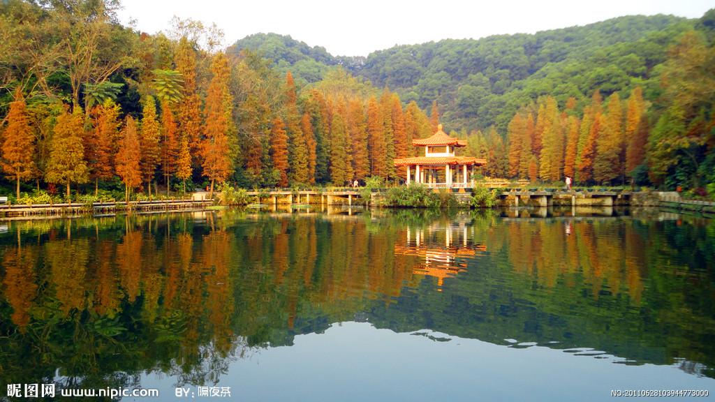 仙湖植物园PPT背景图片免费下载是由PPT宝藏(www.pptbz.com)会员zengmin上传推荐的风景PPT背景图片, 更新时间为2016-11-07,素材编号110548。 深圳仙湖植物园位于深圳市东北郊,东倚深圳第一高峰梧桐山,西临深圳水库。占地8800多亩,始建于1982年,1988年正式对外开放。是一个以科研、科普、旅游为一体的著名植物园与风景区 植物园共保存植物约8000种,建有苏铁保存中心、木兰园、珍稀树木园、棕榈园、酸角树 竹区、荫生植物区、沙漠植物区、百果园、水生植物园、桃花园、裸子