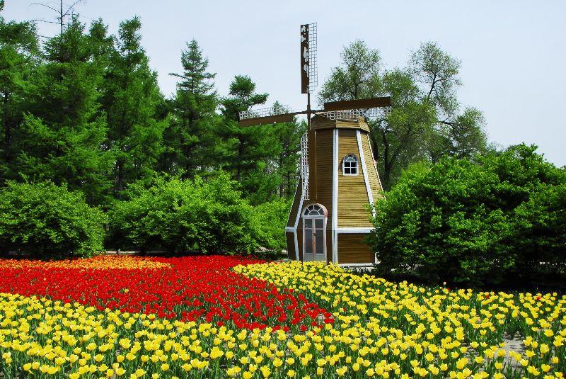 首页 ppt背景 风景ppt背景图片 > 哈尔滨森林植物园ppt背景图片  上一