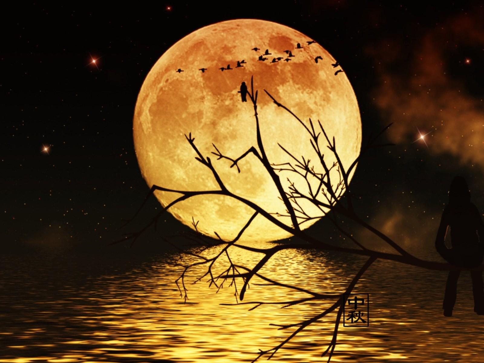 唯美月亮中秋节ppt背景图片下载