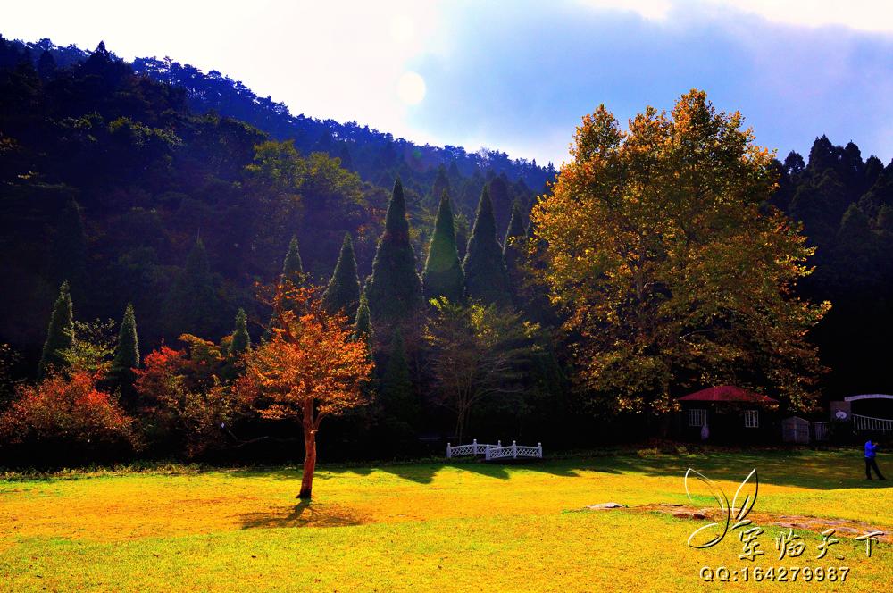 首页 ppt背景 风景ppt背景图片 > 庐山植物园ppt背景图片  上一页