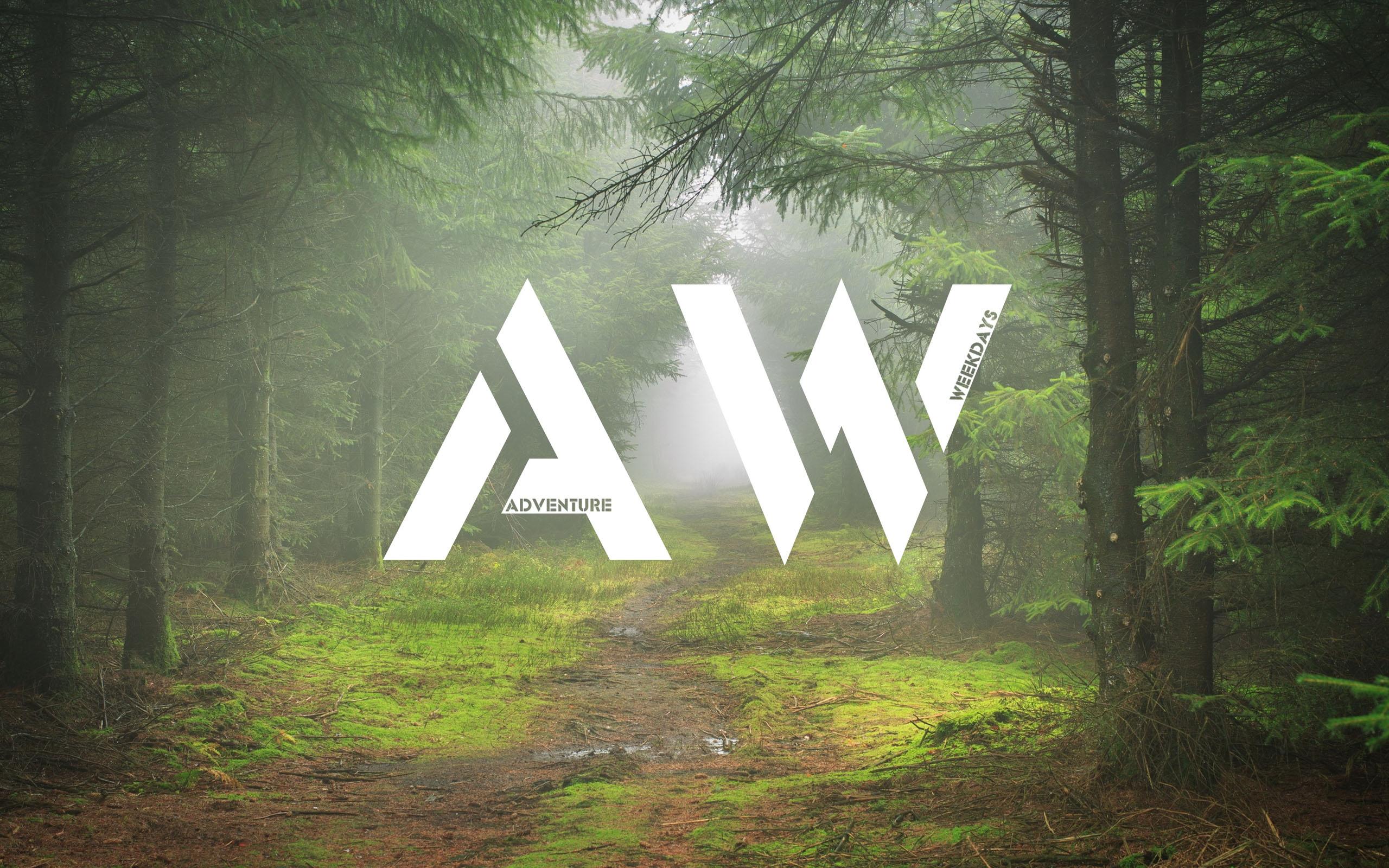 森林的迷雾道路ppt背景图片下载