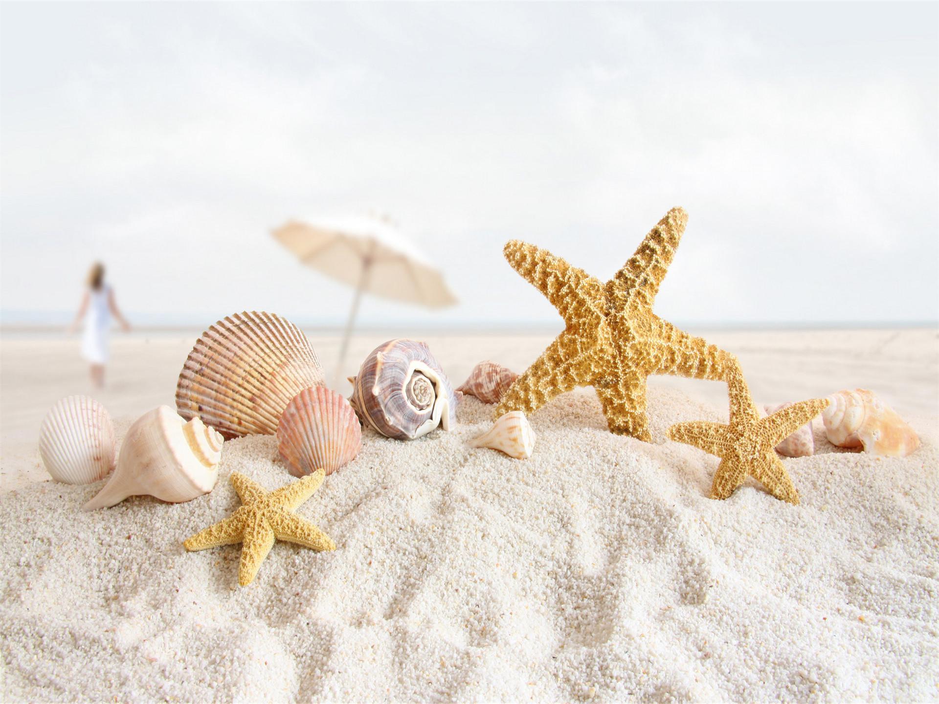 沙滩上的海星贝壳ppt背景图片下载