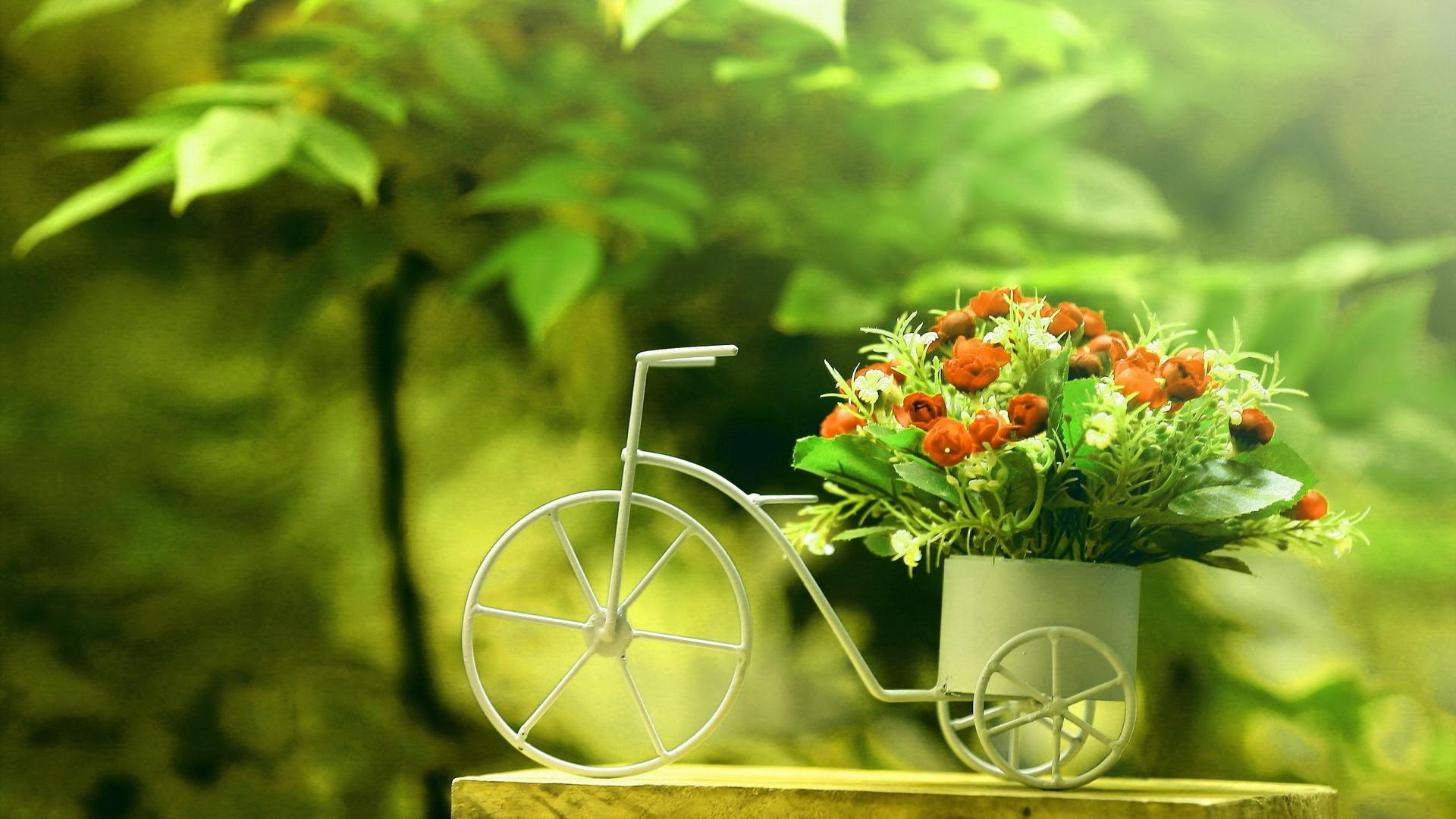浪漫玫瑰花单车ppt背景图片下载