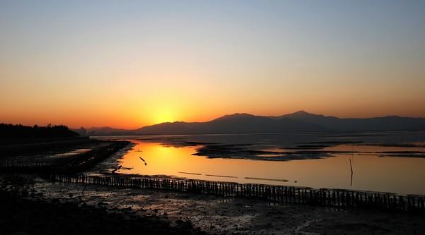 深圳红树林PPT背景图片免费下载是由PPT宝藏(www.pptbz.com)会员zengmin上传推荐的风景PPT背景图片, 更新时间为2016-10-12,素材编号105744。 红树林位于深圳湾东北岸深圳河口的红树林鸟类自然保护区,面积369公顷,是我国唯一位于市区, 面积最小的自然保护区,也被国外生态专家称为袖珍型的保护区。每年有白琵鹭、黑嘴鸥、小青脚鹬等 189种、上10万只候鸟南迁于此歇脚或过冬。 深圳红树林位于深圳湾畔,是我国面积最小的国家级自然保护区,是以红树科 深圳红树林植物为主组成的海