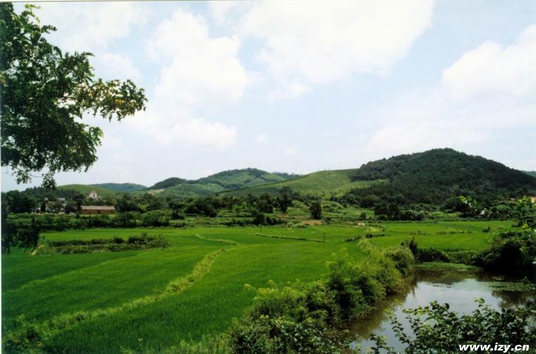 濮塘风景区ppt背景图片下载