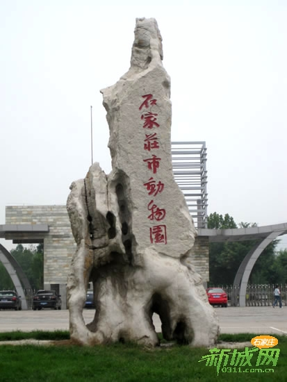 石家庄动物园ppt背景图片下载