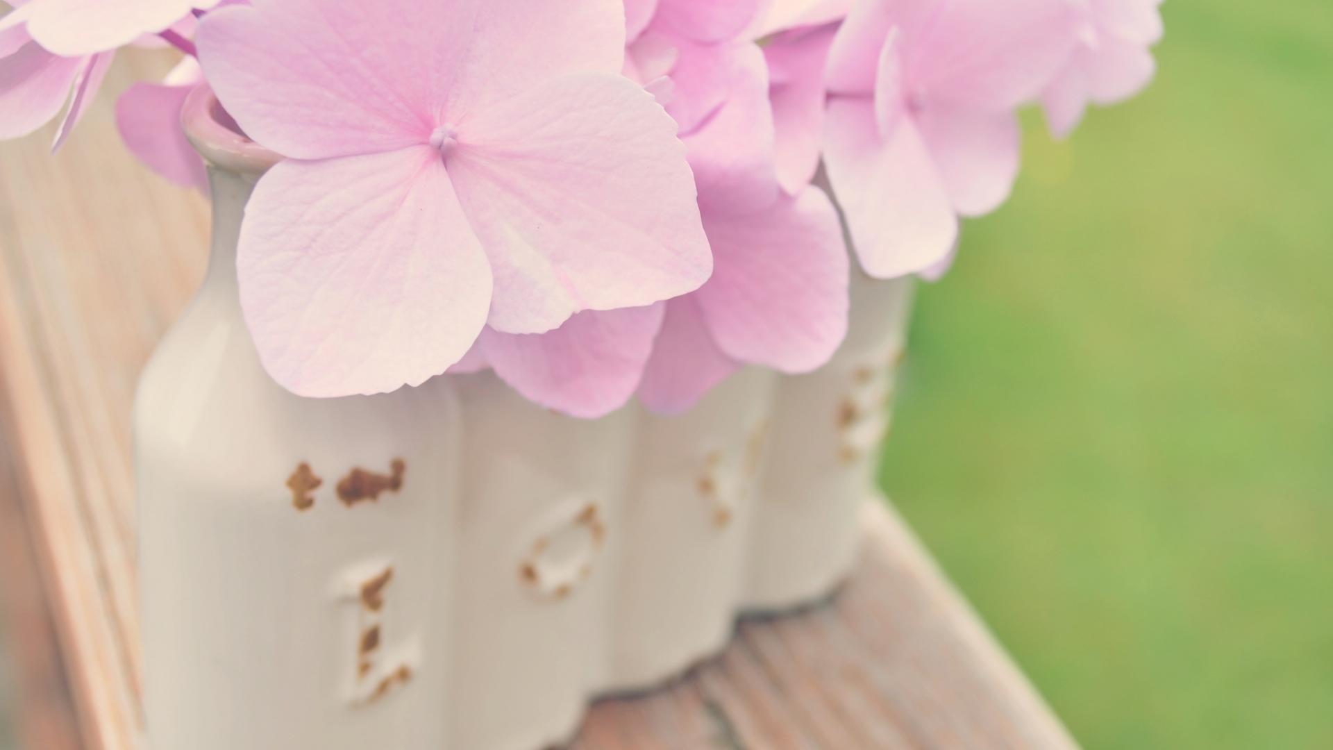 好评:%() 差评:%() 素材预览 下载地址 精选粉色花朵微距唯美ppt背景
