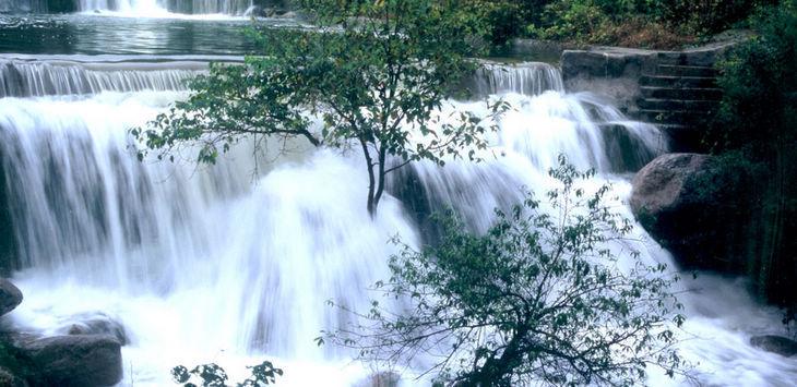 花果山国家森林公园ppt背景图片下载_幻灯片模板免费