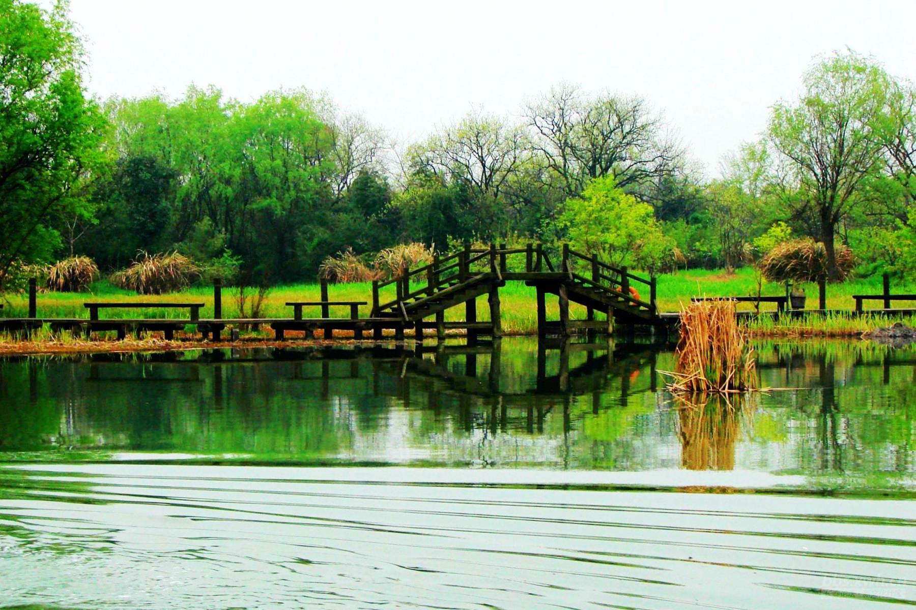 首页 ppt背景 风景ppt背景图片 > 西溪湿地ppt背景图片  下载地址