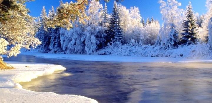 长白山自然保护区ppt背景图片下载