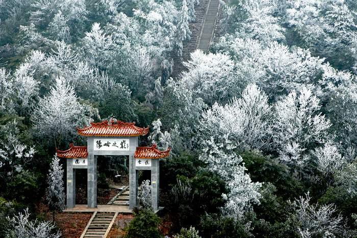 阳岭森林公园ppt背景图片下载