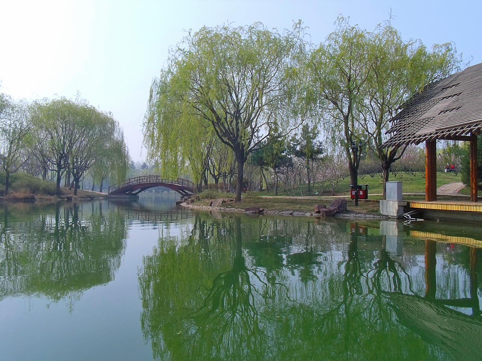 青岛城阳世纪公园ppt背景图片下载