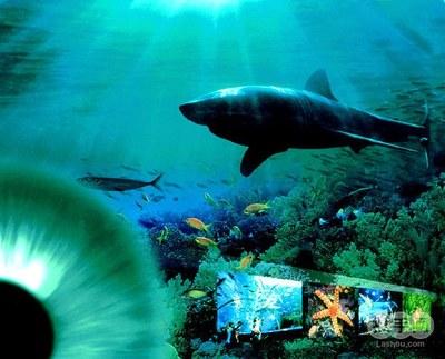 青岛海底世界ppt背景图片下载